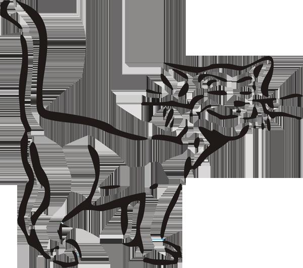 Katze -002