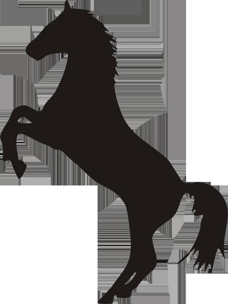 Pferd -005