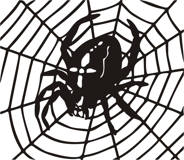 Spinne -001