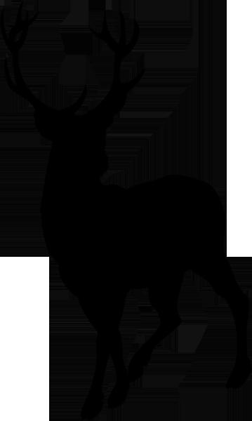 Aufkleber Hirsch -03