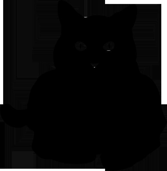 Katze -012