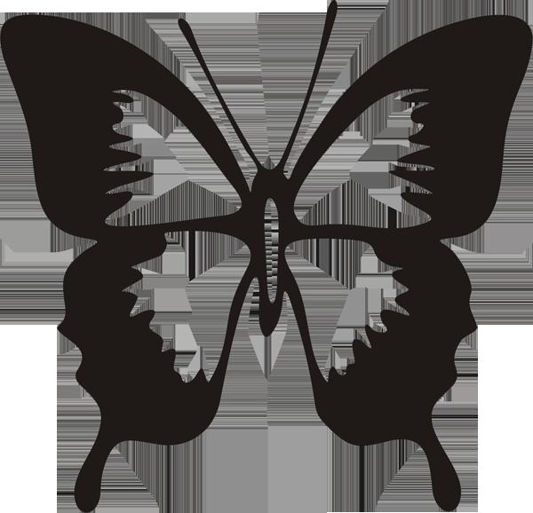 Schmetterling -024