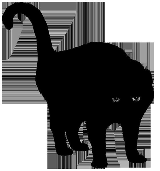Katze -001