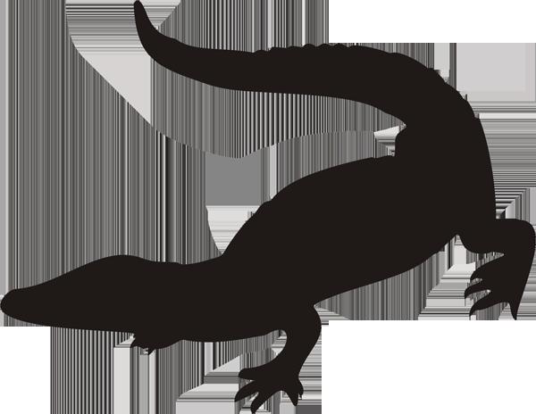 Krokodil -001