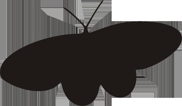 Schmetterling -015
