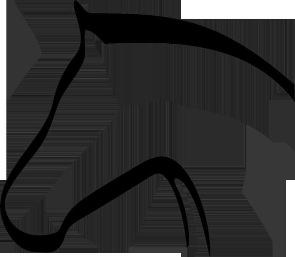 Pferd -003