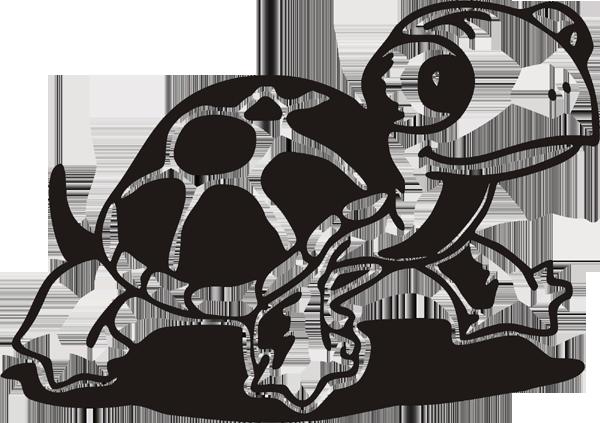 Schildkröte -04