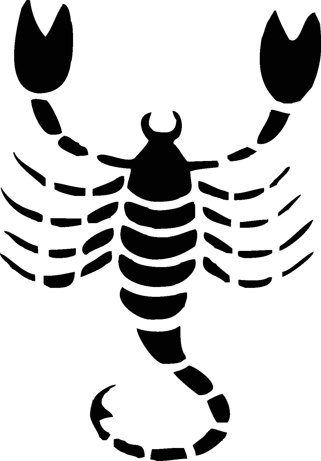 Skorpion -001