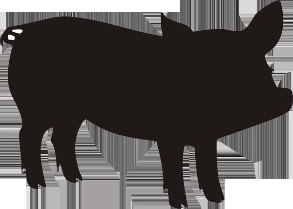 Schweinchen -001