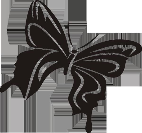 Schmetterling -028