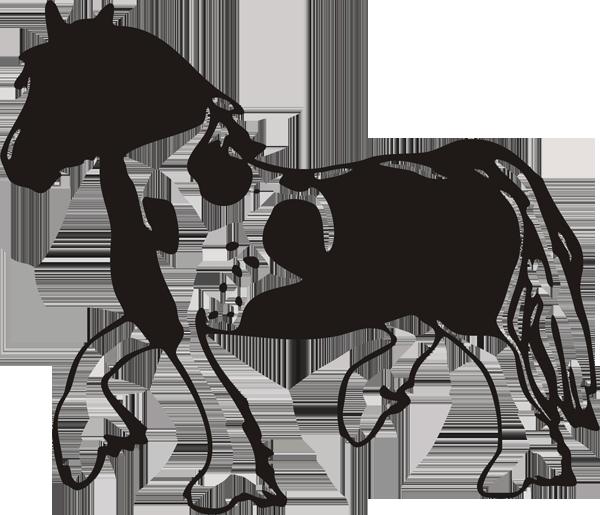 Pferd -022