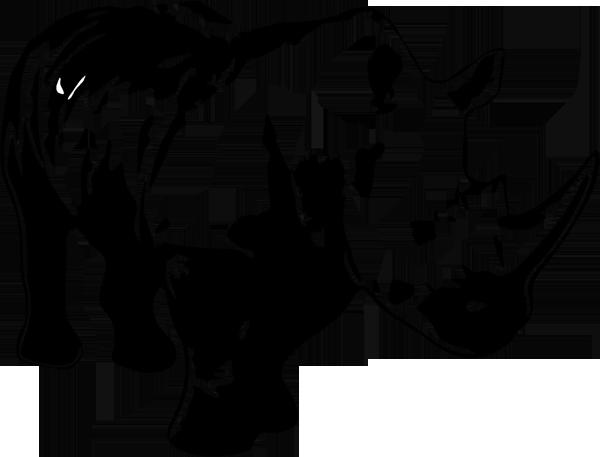 Nashorn -001