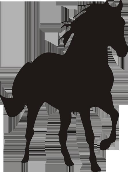 Pferd -016