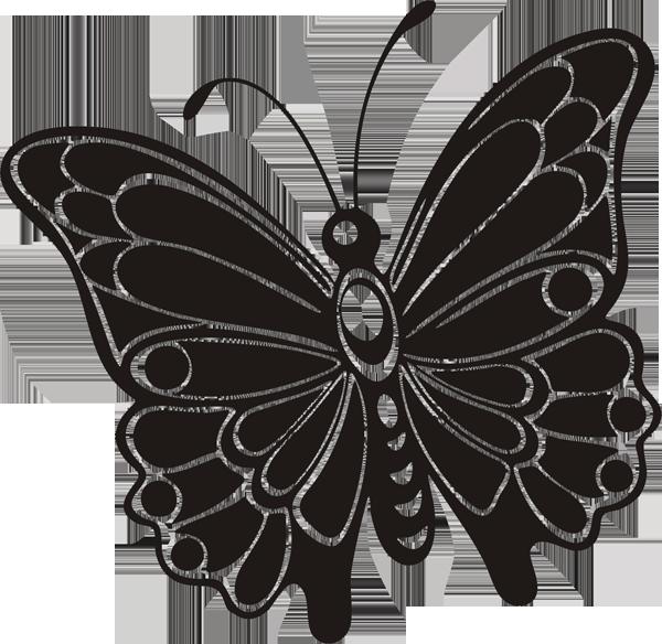 Schmetterling -037