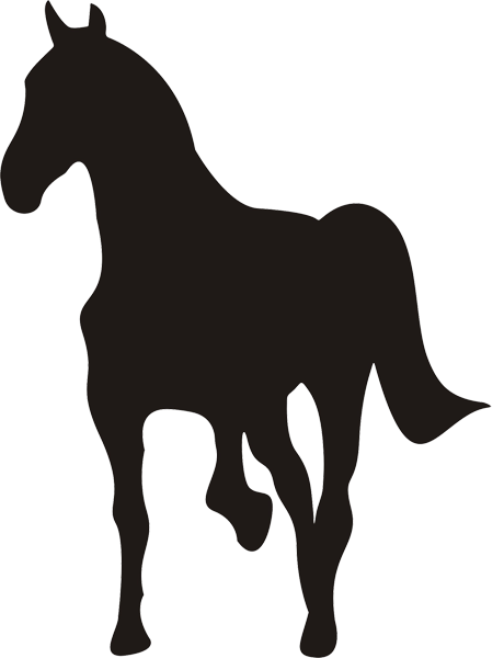 Pferd -021