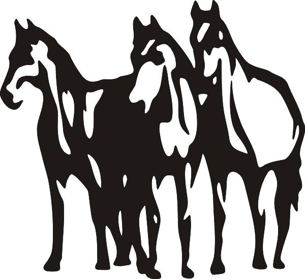 Pferd -008