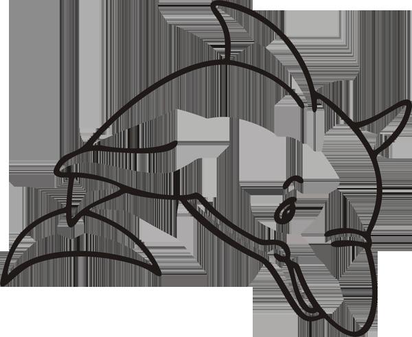 Delfin -004