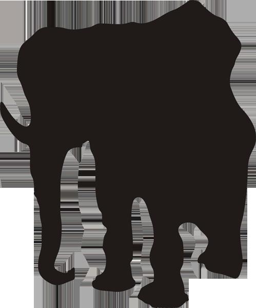 Elefant -003