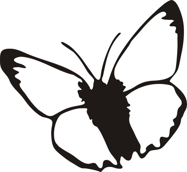 Schmetterling -006