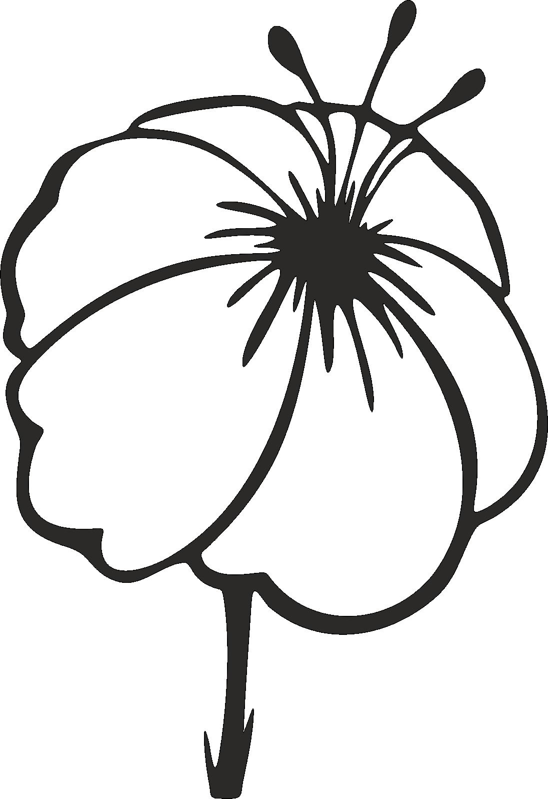 Blume -001