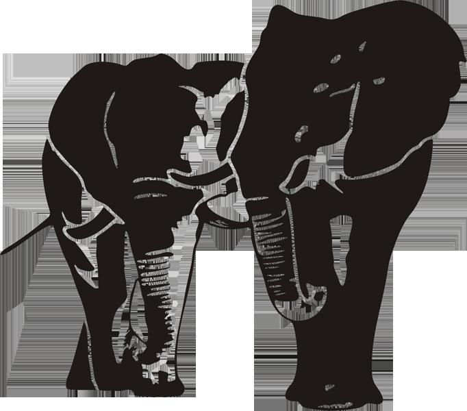 Elefant -004
