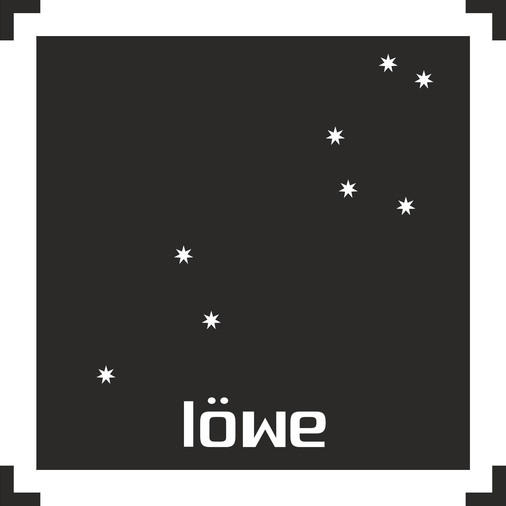 Löwe -003